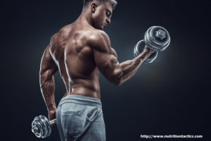 Post Exercise Supplement and Its Importance